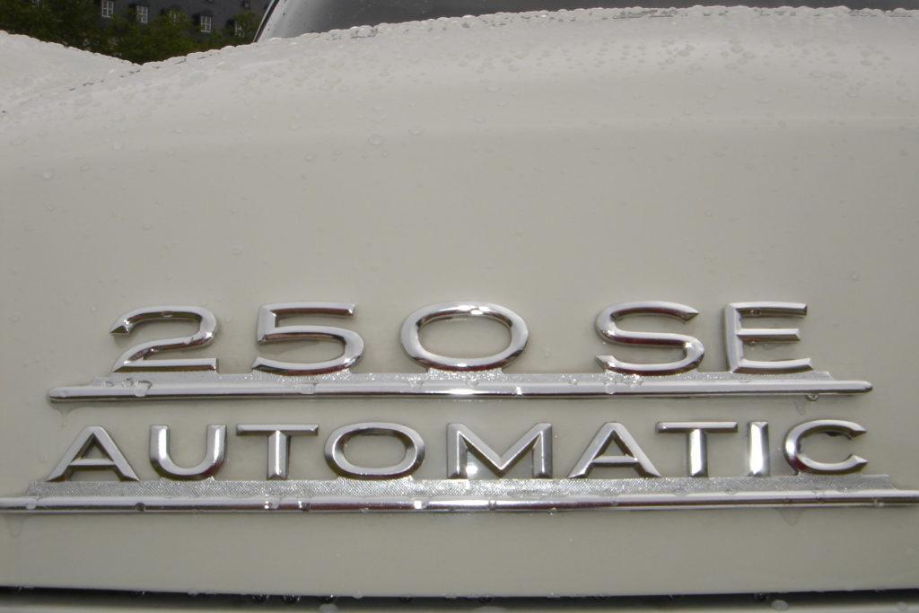 DSC05212 scaled